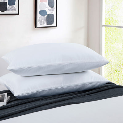 PUREDOWN - Natural Memory Foam Goose Feather Pillow, Set of 2 - Puredown