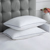 2 Pack Down Alternative Pillows Silver Color Piping 100% Cotton Fabric