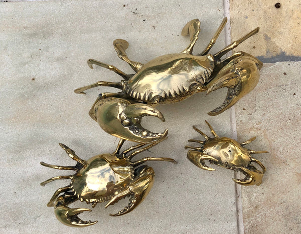 Polished Brass Mud Crab Large