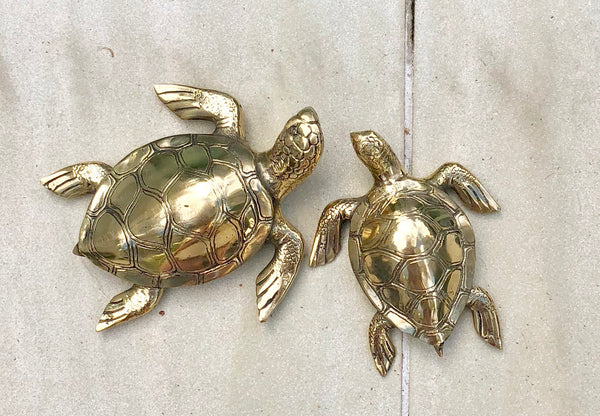 Polished Brass Turtle Medium