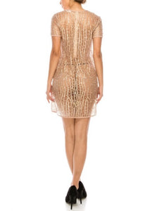 The Glitz and Glam Dress