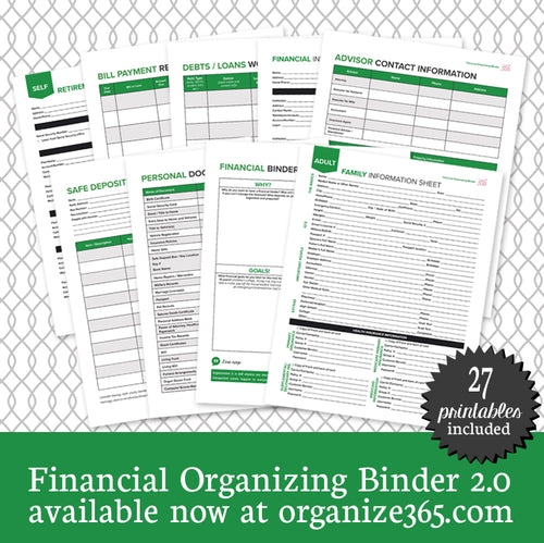 Financial Organizing Binder - International