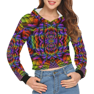 Consciousness All Over Print Crop Hoodie for Women (Model H22)