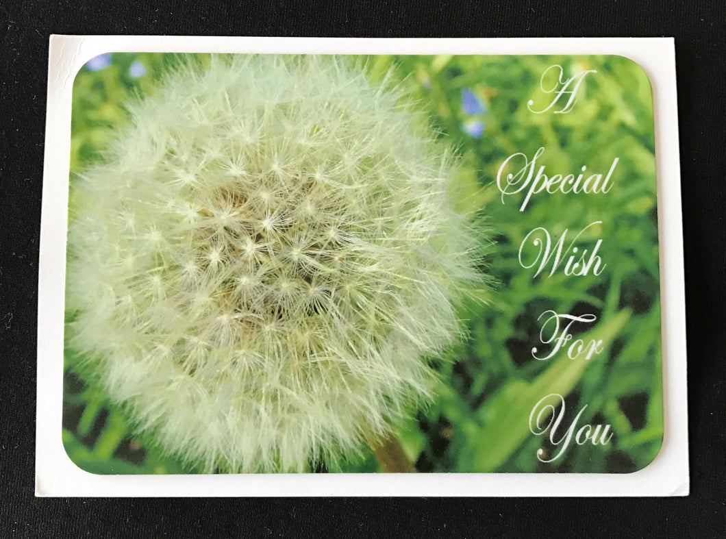 MAGNET CARD   Special Wish for You   SPECIAL PRICE