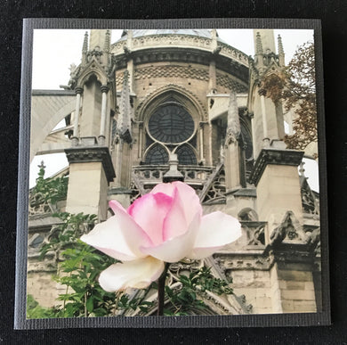 GREETING CARD   PARIS VIGNETTES   Notre Dame Rose   SPECIAL PRICE
