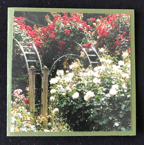 GREETING CARD   Rose Garden   SPECIAL PRICE