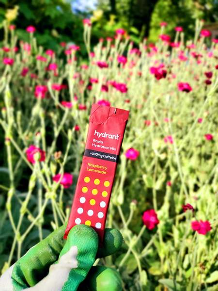 rapid hydration mix in the garden