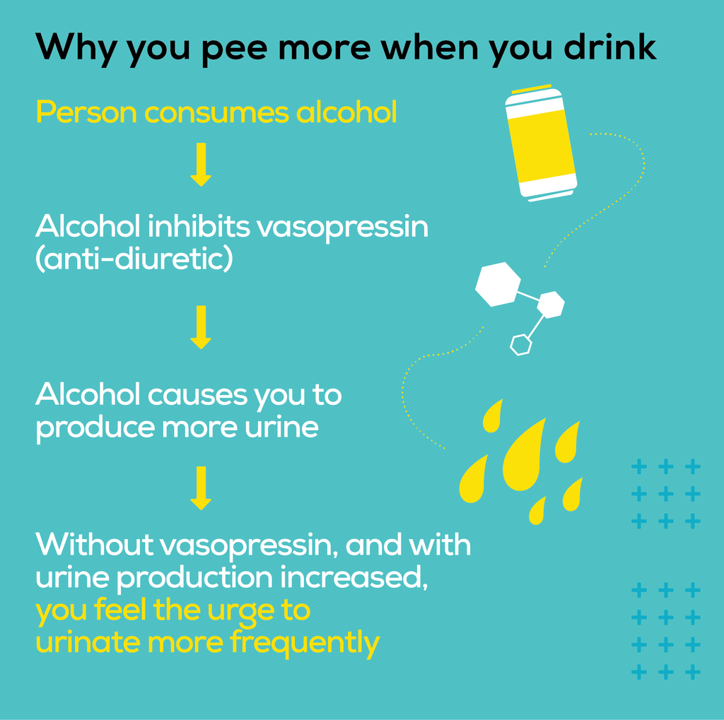 Graphic showing the many mechanisms that cause you to pee more when you drink.