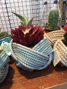 Small Bowl Basket 2 Color
