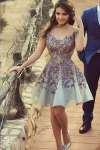 Retro Cap Sleeves Applique Zipper Natural Scoop Prom Dresses