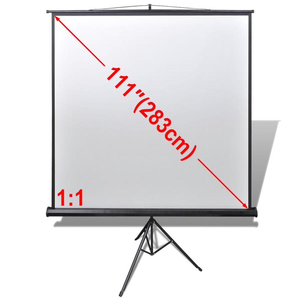 Manual Projection Screen with Height Adjustable Stand 200 x 200 cm 1:1