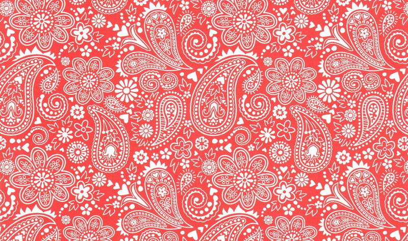 Coral Paisley Pattern Heat Transfer Vinyl