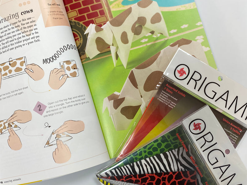 Beginner Origami Craft Kit