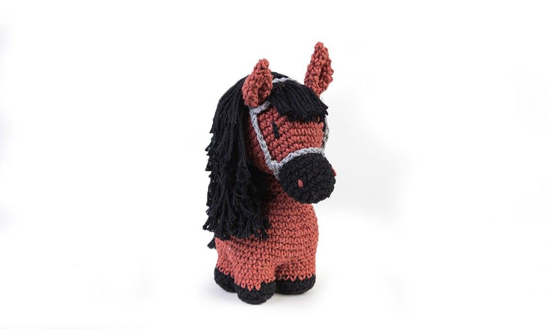 Pony Sienna Hoooked Yarn Kit with Eco Barbante Yarn