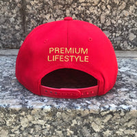 """The Colors"" Snapback (Red)"