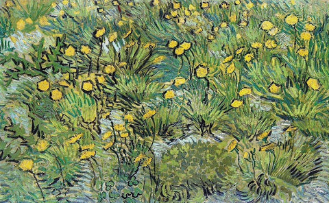 A Field of Yellow Flowers, 1889