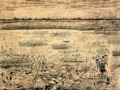 A Marsh with Water Lillies, 1881
