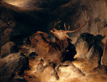 Sir Edwin Henry Landseer - Deer and Deer Hounds in a Mountain Torrent, Tate Britain