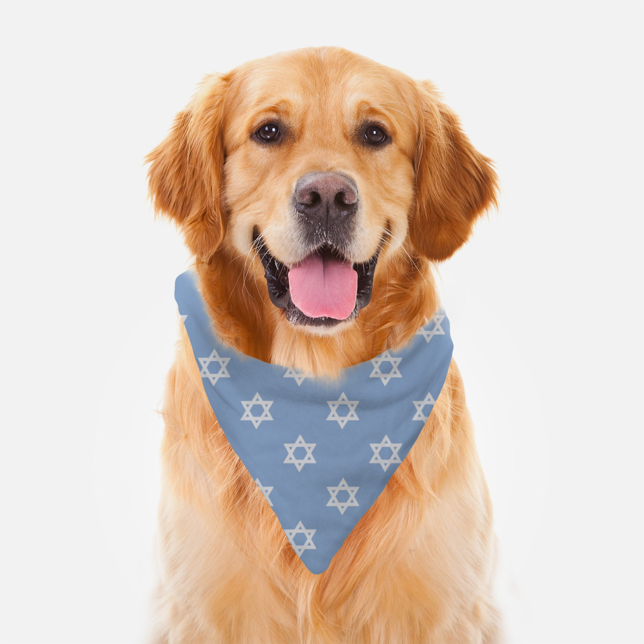 Pet Bandana - Magen David - Jewish Dog - Blue