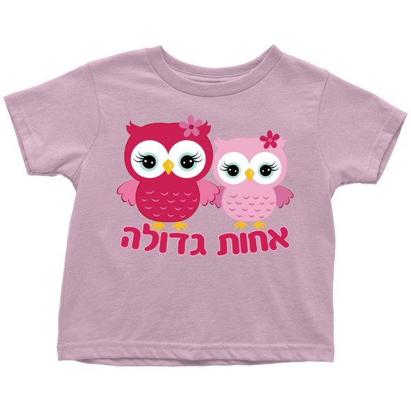 Big Sister Hebrew T-Shirt, Toddler and Youth