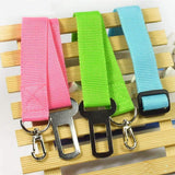 Safety Leash For Dogs - Petsagram