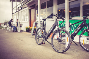 Meet the all-new Roodog Avatar Electric Bike