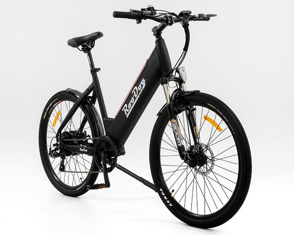 Mountain Electric Bikes (eMTB)