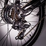 GeoElectricBikes:Roodog Avatar Step Over,Step Over