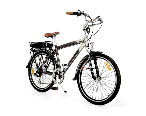 GeoElectricBikes:Roodog Tourer,Step Over