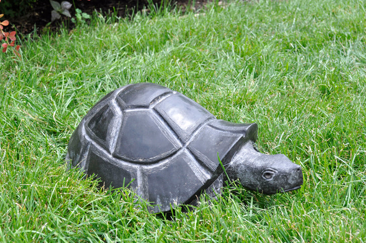 Great Terrapin Sculpture