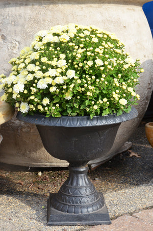 White Antique Iron Urn 15""