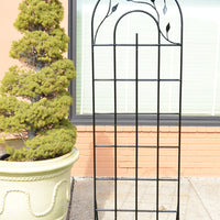 A Twist On Elegance Trellis
