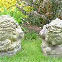 Antique Chinese Fu Dogs - Pair