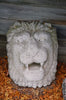 Peruvian Lion Fountain Mask