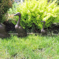 Bronze Duck Family of Four