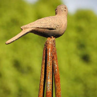 Artist Forged Bird Tuteur-MED