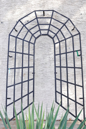 Depth of Character Trellis