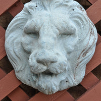 Lion Face Mask - Blue