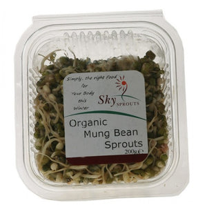 Organic Mung Bean Sprouts