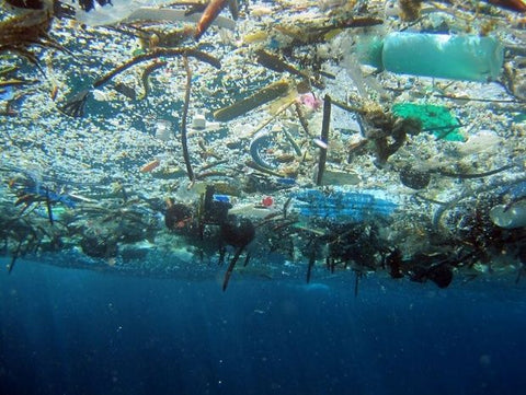 The reality of plastic waste - what can you do about it?