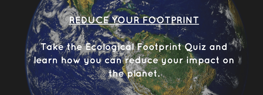 sustainable shoppers guide to earth day | BuyMeOnce.com
