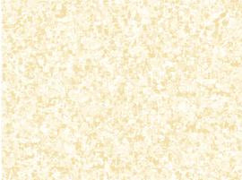 QT Fabrics, Color Blends, Vanilla, 2358-EA