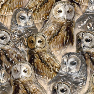 QT-Eabrics, Nocturnal Wonders, Packed Barred Owls, Stone,  27066-E