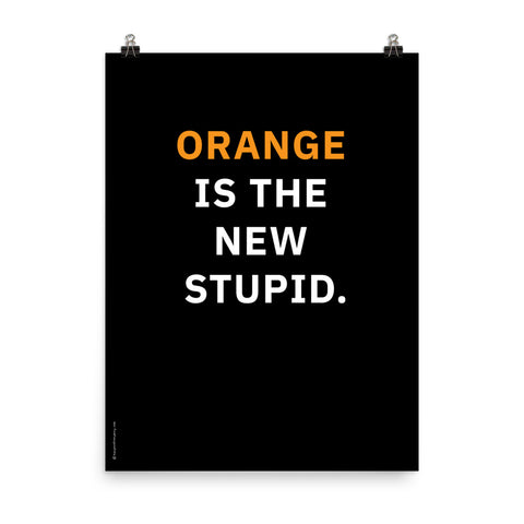 Orange is the New Stupid (Black) Poster