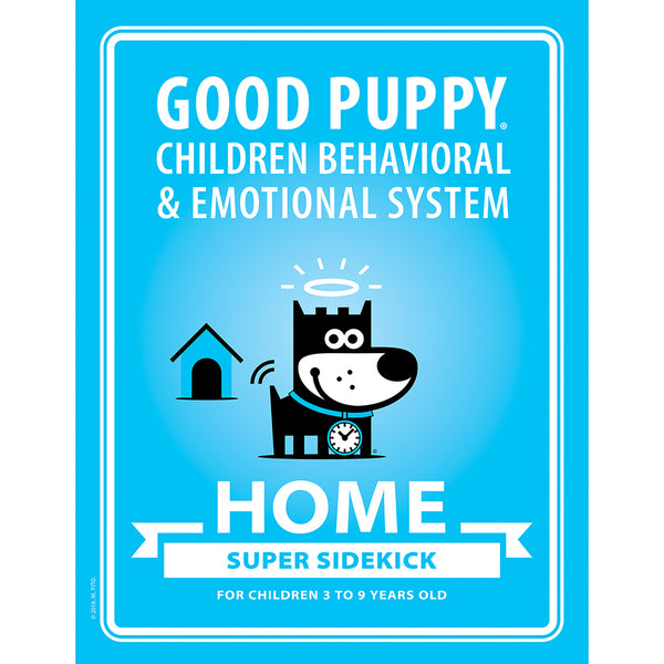 Child behavior and emotional self regulation tools and practices for home.