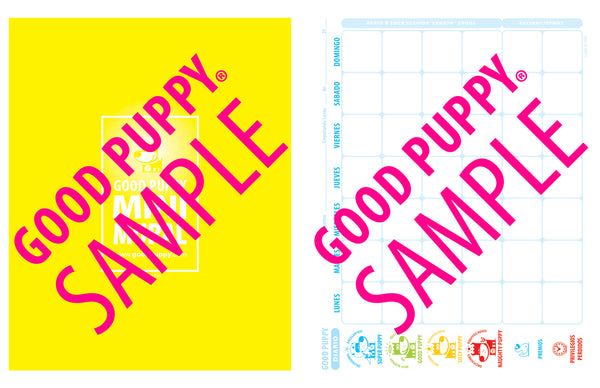 GOOD PUPPY . TERAPIA . KIT DE HERRAMIENTAS . Sesiones 1-10 . SPANISH . Softcover