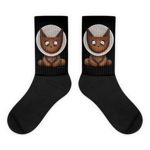 Apollo Lucky Louie . Unisex Socks