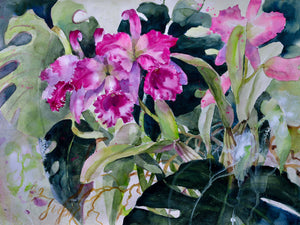 Poster - Purple Cattleya