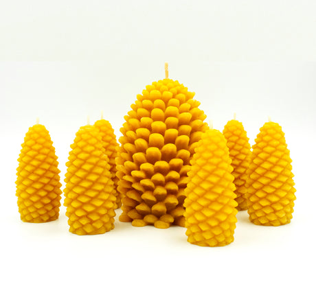 Pinecones - Pure Beeswax