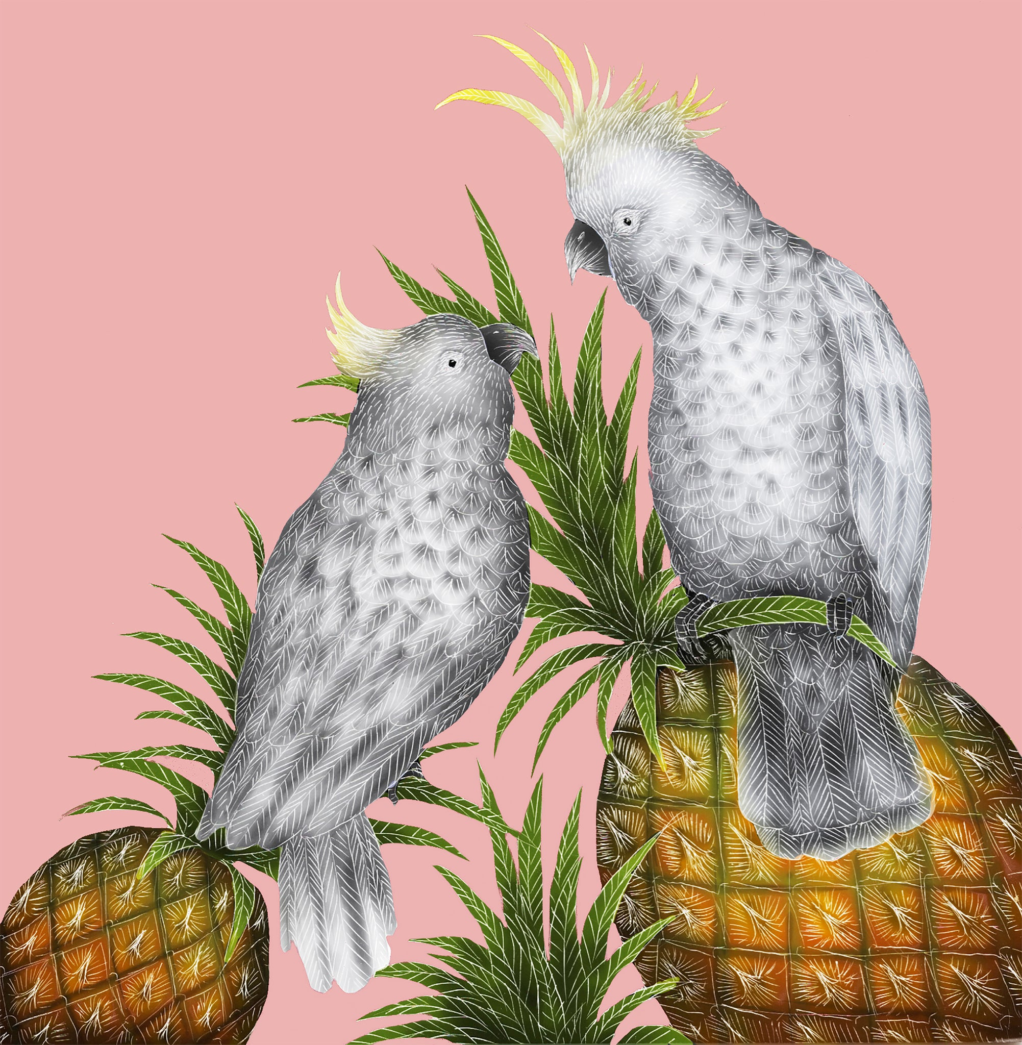 Cockatoos and Pineapples Print